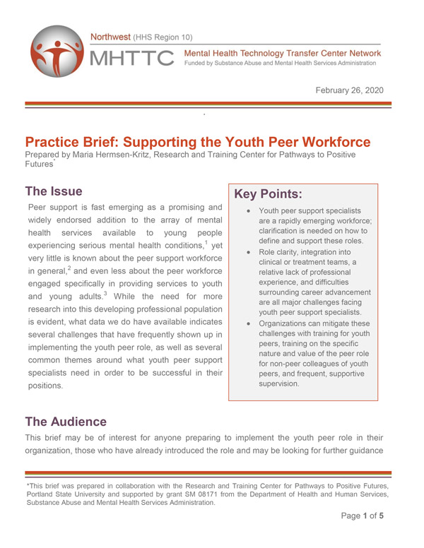 Practice Brief: Supporting the Youth Peer Workforce
