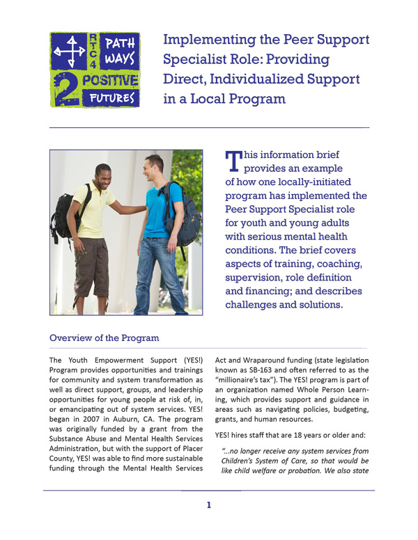Implementing the Peer Support Specialist Role (YES)