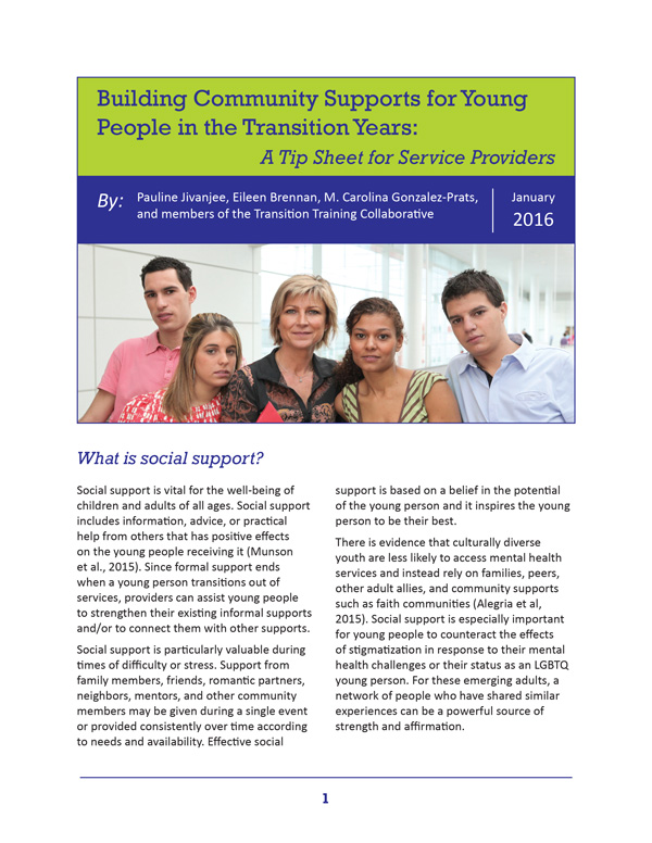 Building Community Supports for Young People in the Transition Years