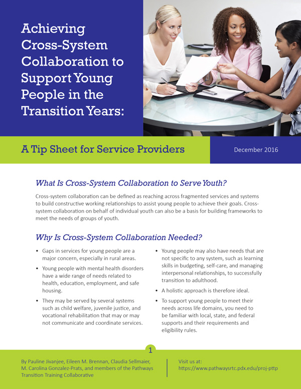Achieving Cross-System Collaboration to Support Young People