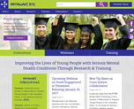 New Pathways website screenshot [enable images to see]
