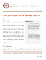 'Supporting the Youth Peer Workforce' cover [enable images to see]